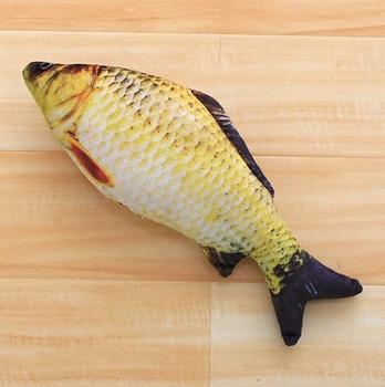 Rawchanger Fisch