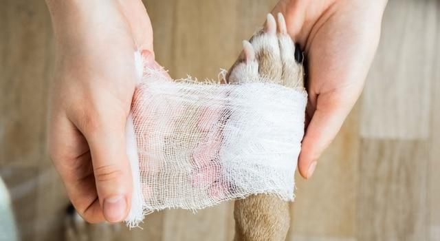 Grannen behandeln und entfernen